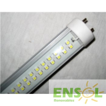 TL Led tube light 60cms 8W