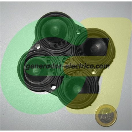 Flopower FL1712 and 1724 Valve Assy